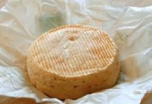 Le Munster, fromage de l'Alsace et des Vosges