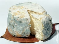 Cheese chaource