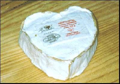 Le Neufchâtel, fromage de Normandie