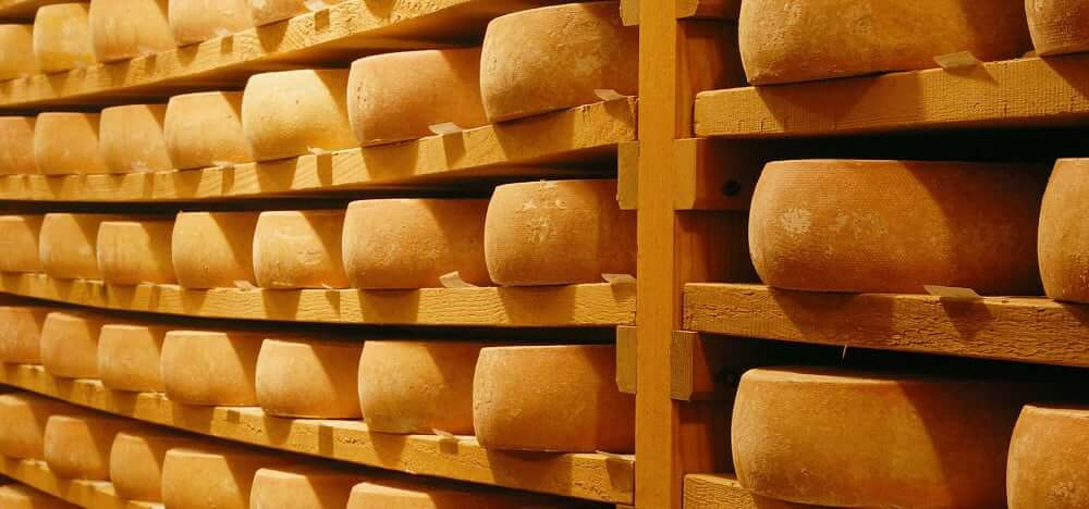 Le mode d'emploi des fromages