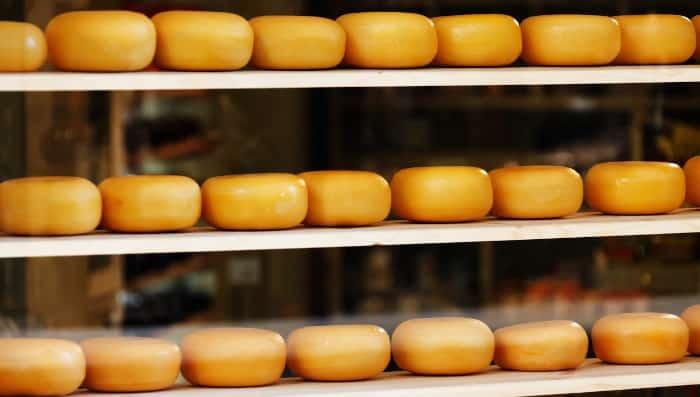 Toutes les étapes dans la fabrication du fromage